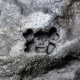 Skull and crossbones potters mark, chop, stamp, Jennifer Corfield Ceramics